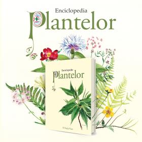 Enciclopedia plantelor