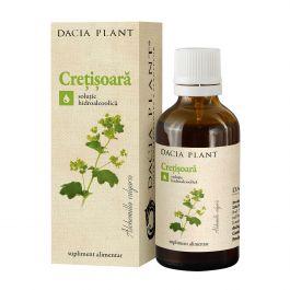 Extract de cretisoara Alchemilla, 50 ml, Meduman Viseu : Farmacia Tei online