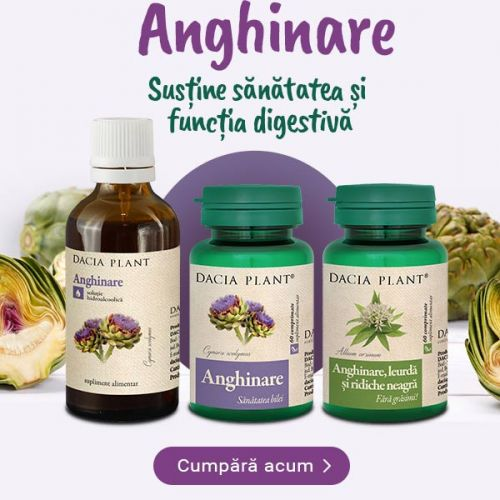 https://www.daciaplant.ro/catalogsearch/result/?q=anghinare