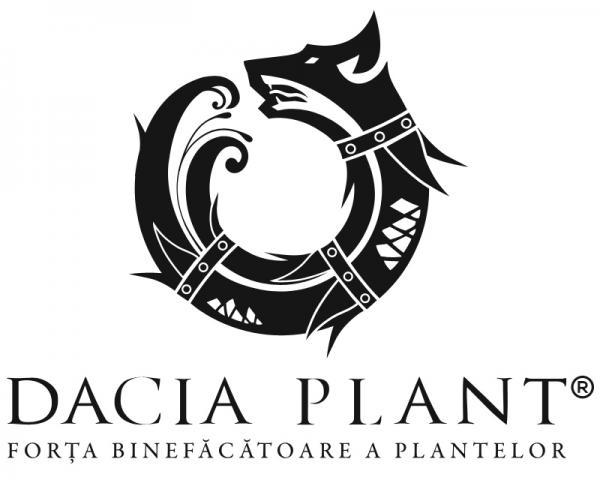 Relansare brand Dacia Plant si noua identitate vizuala de companie
