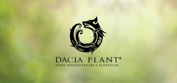 DACIA PLANT. Afacerea pornită cu 100 de dolari și cu plante tămăduitoare din România
