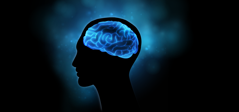 detoxifierea creierului pe măsură ce îl înțelegi